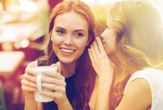Unga kvinnor som dricker kaffe och talar på kafét Royaltyfri Fotografi