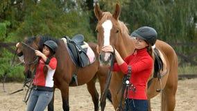 Unga kvinnor som förbereder hästar för att rida arkivbild