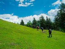 Unga kvinnor som trekking i Svaneti, Arkivfoton