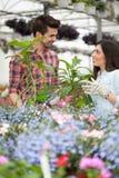 Unga le blomsterhandlare man och kvinna som arbetar i växthuset Arkivbilder