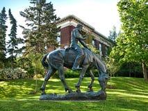 Unga Lincoln på hästrygg Arkivbild
