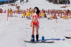 Unga lyckliga nätta kvinnor på en snowboard i färgrik bikini Royaltyfri Bild