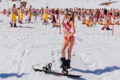 Unga lyckliga nätta kvinnor på en snowboard i färgrik bikini Royaltyfri Foto