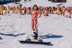 Unga lyckliga nätta kvinnor på en snowboard i färgrik bikini Arkivbild