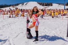 Unga lyckliga nätta kvinnor på en snowboard i färgrik bikini Fotografering för Bildbyråer