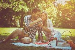 Unga lyckliga par som har picknicken i ängen Parsammanträdenolla arkivfoton