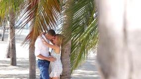 Unga lyckliga par som kramar och kysser sig under ett palmträdblad Romantiska förhållanden eller loppbegrepp HD stock video
