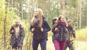 Unga lyckliga vänner som går i skog och tycker om en bra höst Arkivfoto