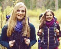 Unga lyckliga vänner som går i skog och tycker om en bra höst Royaltyfri Fotografi