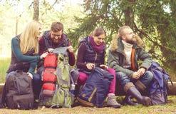 Unga lyckliga vänner som sitter på ett träd, loggar in skogen och att tycka om Royaltyfri Fotografi
