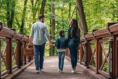 Unga mellan skilda raser familjinnehavhänder och gå till och med träbron i skog royaltyfri fotografi