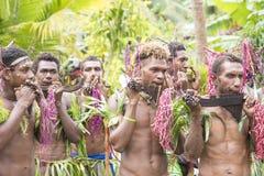 Unga män som spelar panpipes, Solomon Islands Arkivbilder