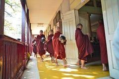 Unga munkar i Ganayon Kyaung royaltyfri bild