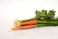 unga nya grönsaker Arkivfoto