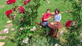 Unga par som tycker om mat och vin i härlig rosträdgård på romantiskt datum, flyg- bästa sikt från över av mannen och att äta för arkivbilder
