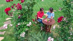 Unga par som tycker om mat och vin i härlig rosträdgård på romantiskt datum, flyg- bästa sikt från över av mannen och att äta för royaltyfri fotografi