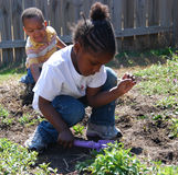 unga planters Arkivfoton