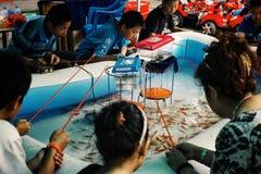 unga pojkar och flickor som fiskar den guld- fisken från en liten simbassäng royaltyfri foto