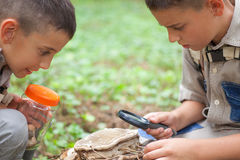 Unga pojkar på campa utforskade naturen genom att använda förstorande gla royaltyfri bild