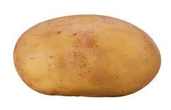 unga potatisar Arkivbild