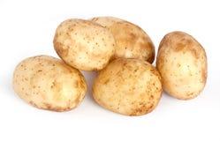 unga potatisar Arkivfoton