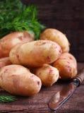 unga potatisar Royaltyfri Bild