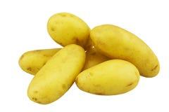 Unga potatisar som isoleras på vit Arkivfoton