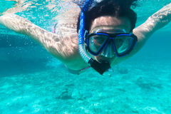 unga snorkeling kvinnor Royaltyfri Bild