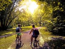 Unga studenter som rider deras cyklar på, parkerar royaltyfri bild