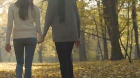 Unga studenter tycker om promenaden i härligt parkerar efter grupper, tonårs- romans stock video