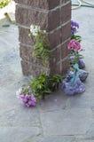 Unga träd av blommor Fotografering för Bildbyråer