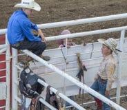 Unga upphetsade cowboyer royaltyfri foto