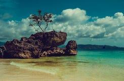 unga vuxen människa Lopp till Filippinerna Lyxig semester Boracay paradisö mot bakgrund field blåa oklarheter för grön vitt wispy arkivbild