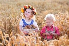 Ungar i bayerska dräkter i vetefält arkivbilder