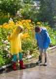 Ungar i regn Royaltyfria Foton