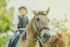 Ungar lär att rida en häst nära floden arkivbild