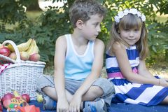Ungar på picknicken Fotografering för Bildbyråer