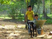 Ungar som arbetar, Panama Fotografering för Bildbyråer