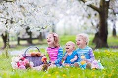 Ungar som har picknicken i blommande trädgård Arkivbilder