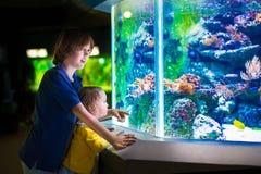 Ungar som håller ögonen på fiskar i akvarium Royaltyfri Fotografi
