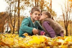 Ungar som leker i höstpark Arkivfoto