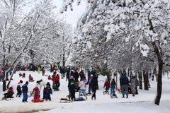 ungar som leker snow Royaltyfria Bilder
