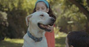 Ungar som spelar med en stor vit hund lager videofilmer