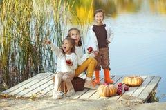 Ungar som spelar nära sjön i höst Arkivfoton