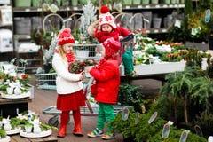 Ungar som väljer julgranen Shoppa för Xmas-gåvor royaltyfri foto