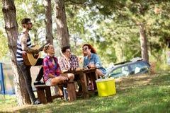 Ungar tycker om i picknick i trä med musik, skämt och kallt öl royaltyfria bilder