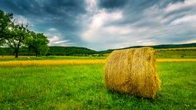 Ungarische Landschaft Lizenzfreie Stockfotos