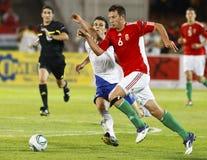 Ungarn gegen Finnland Stockbilder