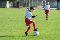 Ungars fotboll royaltyfri bild