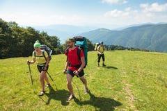 Ungdomarfotvandrar i Carpathian berg royaltyfri fotografi